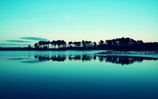 calm-lake-tree-shadow-morning-landscape